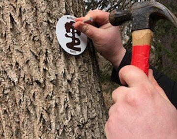 Patriots' Path Trail Maintenance – April 1st, 2021