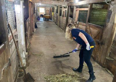 Rivers Edge Horse Rescue – June 8, 2021