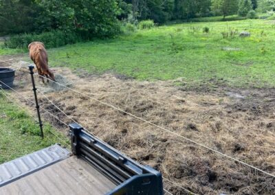 Rivers Edge Horse Rescue – August 2, 2021